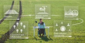 Man at desk in field with data around him