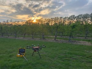 Drone in front of Orchard at sunset