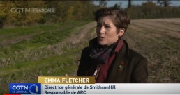 CGTN Francais interview Emma Fletcher at ARC Cambridge