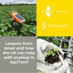 How the UK can help Israel scaleup in AgriTech